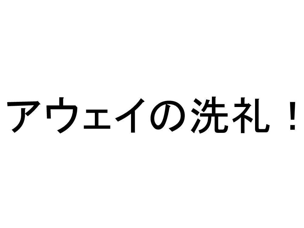 Dscn0343001_3